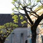 mairie + clocher